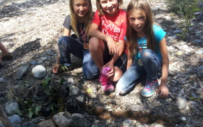Junior Explorer Program Begins June 22nd